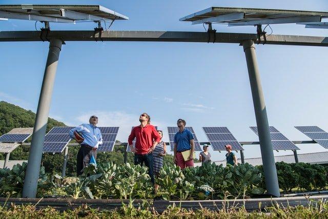 In gesprek over Sungevity's zonnepanelen met een huurder van Van Alckmaer